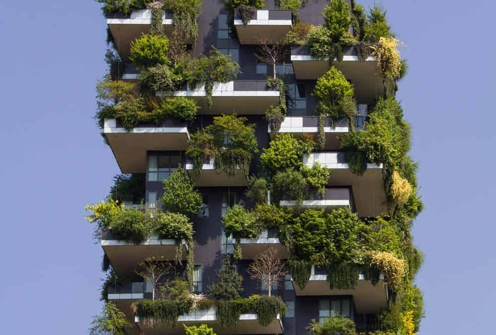 Nachhaltig leben Blog